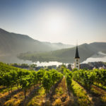 The vineyards of Bremm and the loop of the Moselle (German: Mosel) - Rhineland-Palatinate, Germany